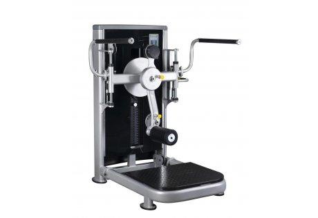 GLT-315  Ягодичные мышцы - купить у производителя
